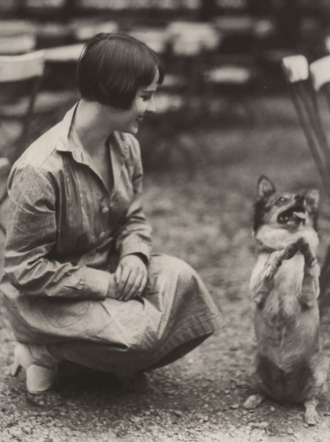 louise brooks dog